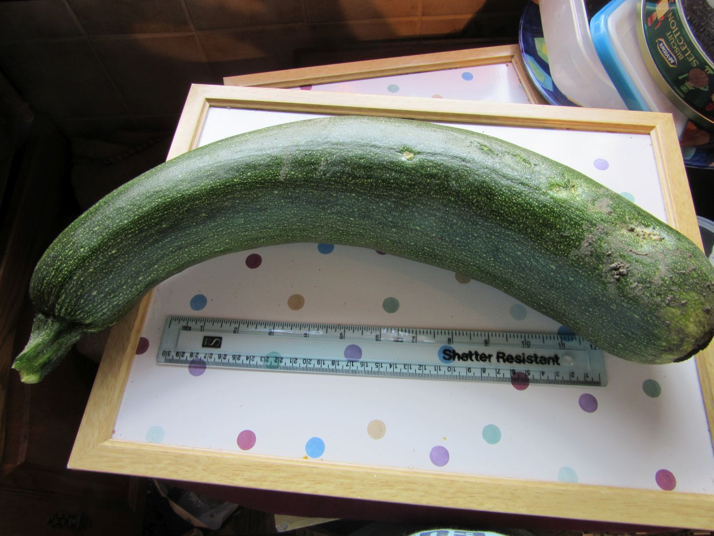 aug20_courgette01
