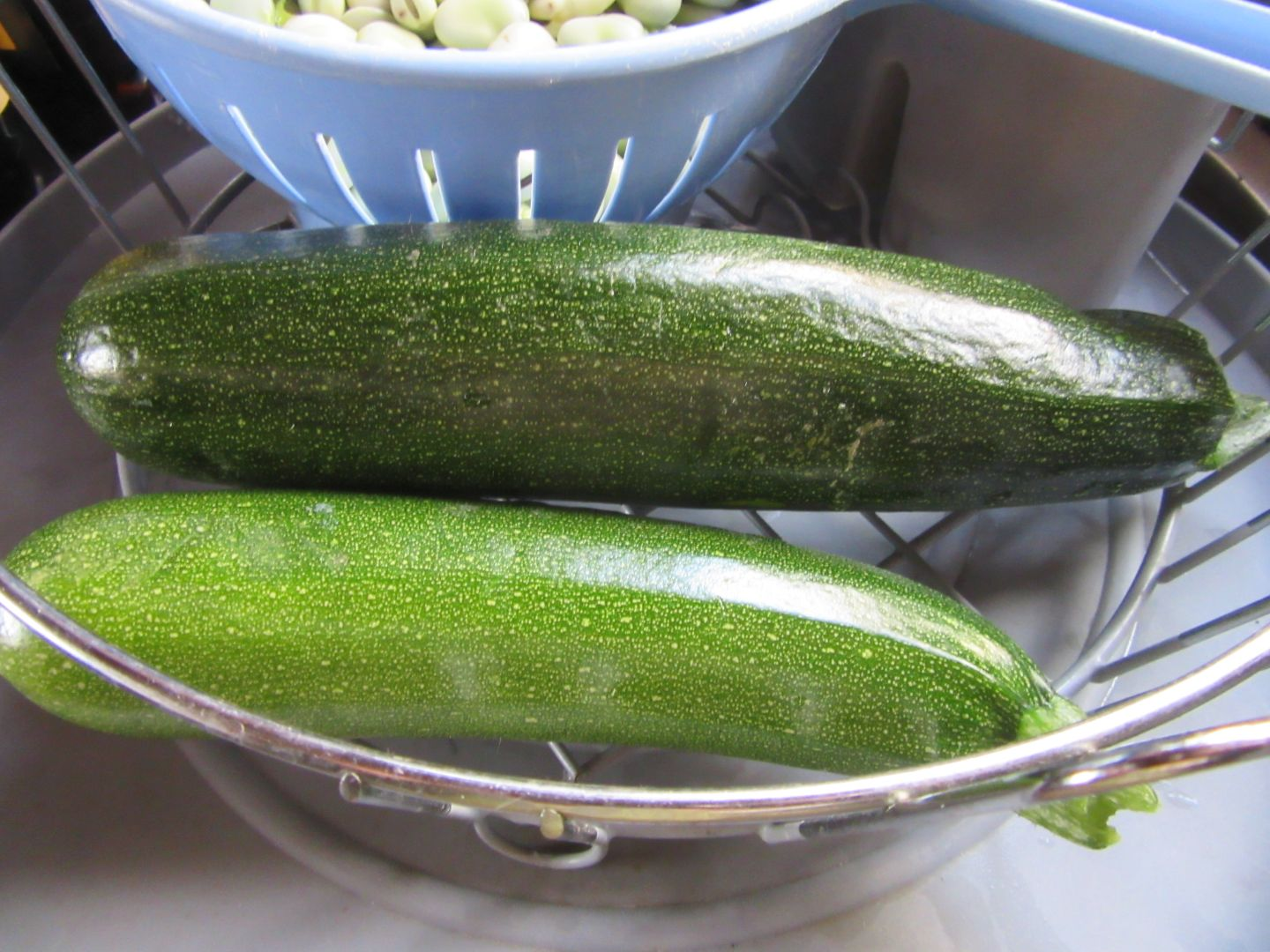 aug23_courgettes
