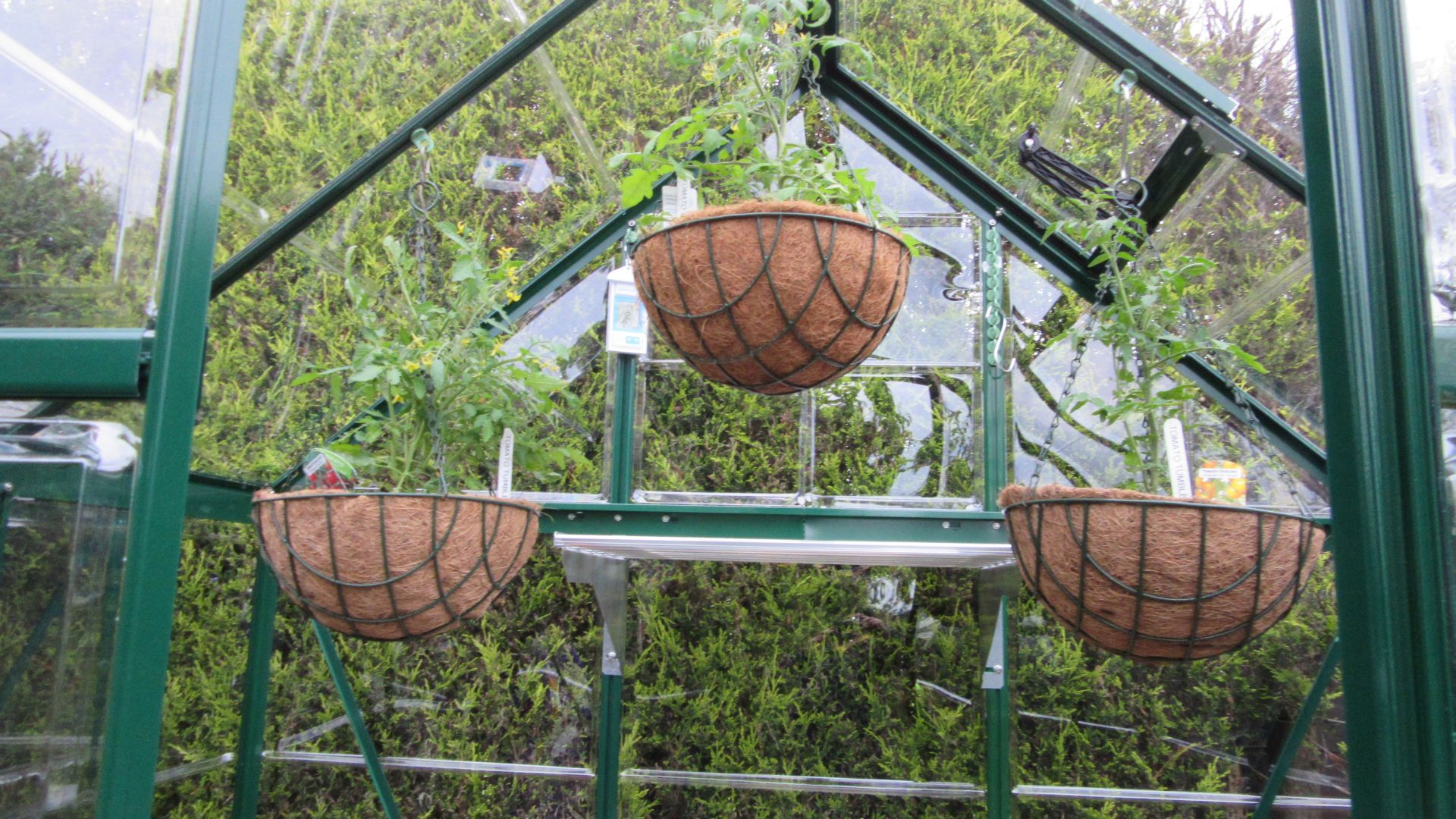 gh2_hanging_baskets