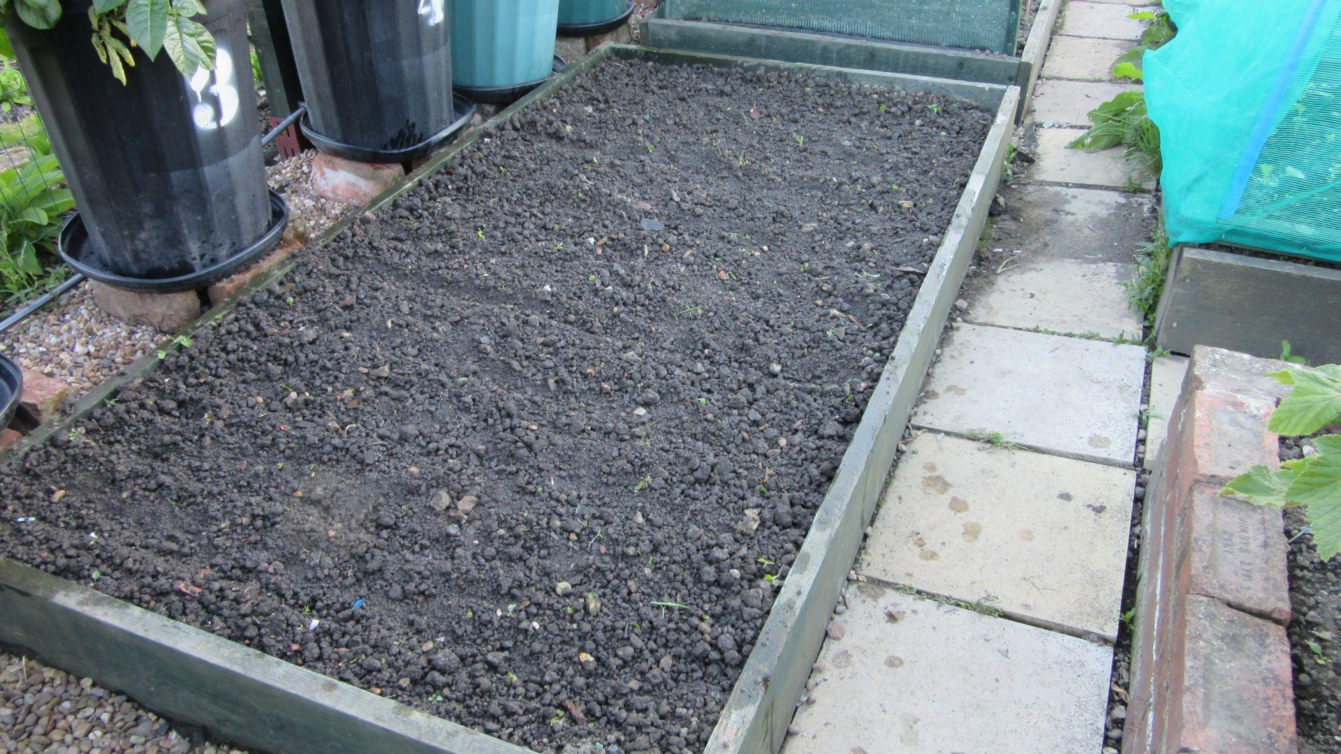 saladbed_planted