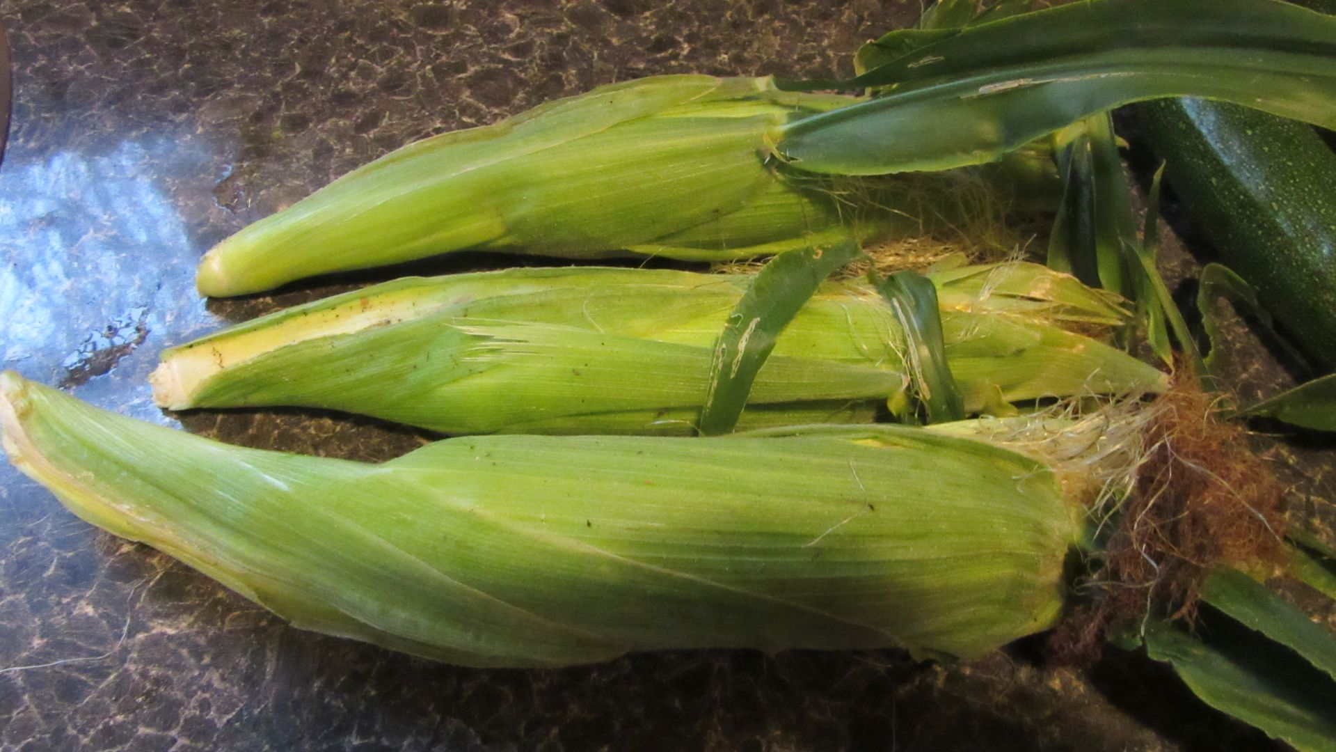 sep17_corn1