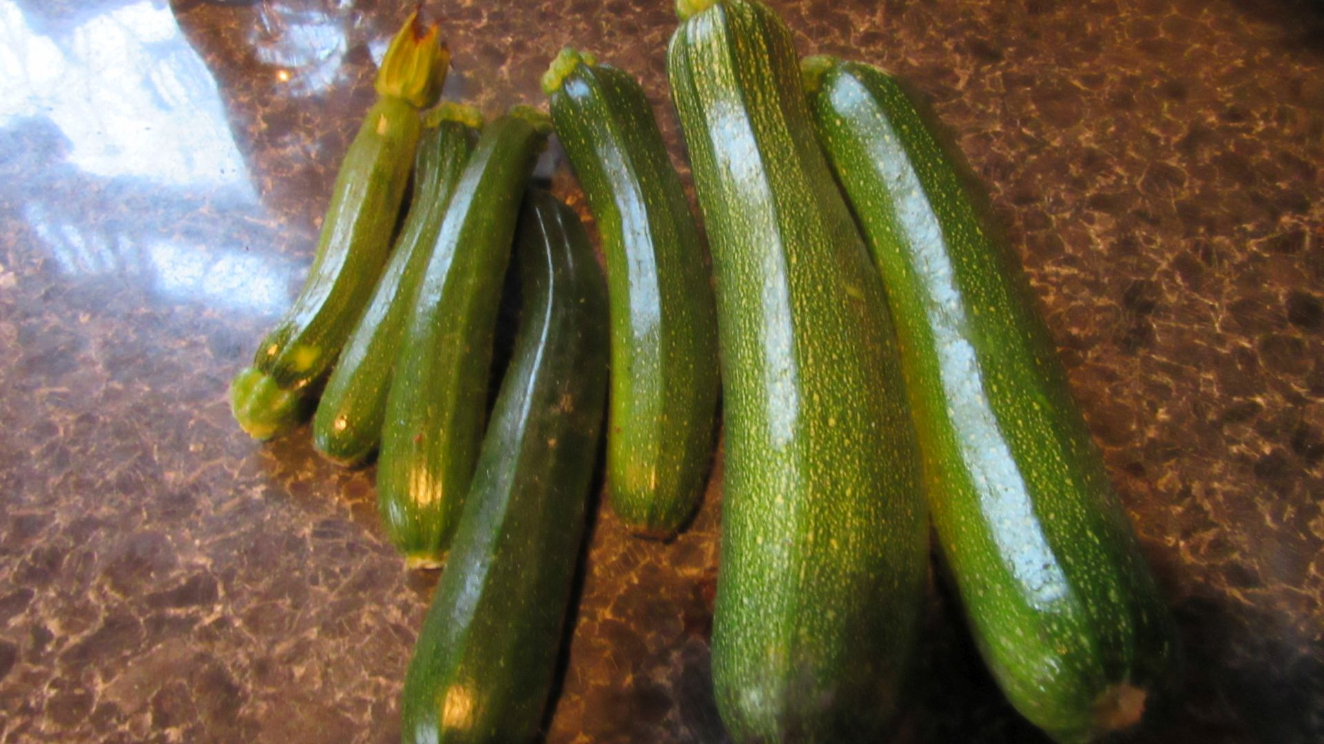 sep27_last_courgettes